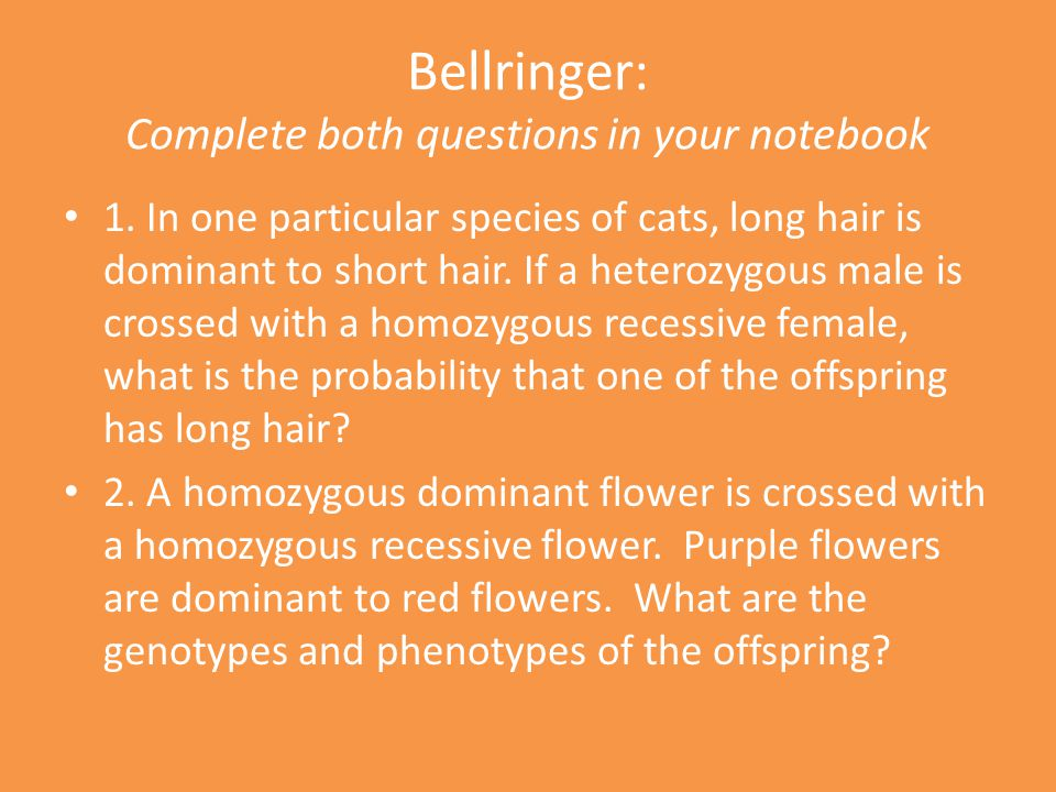 Bellringer: Complete both questions in your notebook 1.