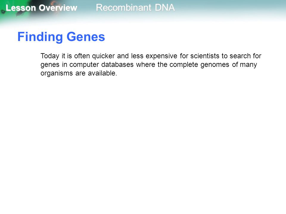 Lesson Overview Lesson Overview Recombinant DNA Finding Genes Today it is often quicker and less expensive for scientists to search for genes in compu