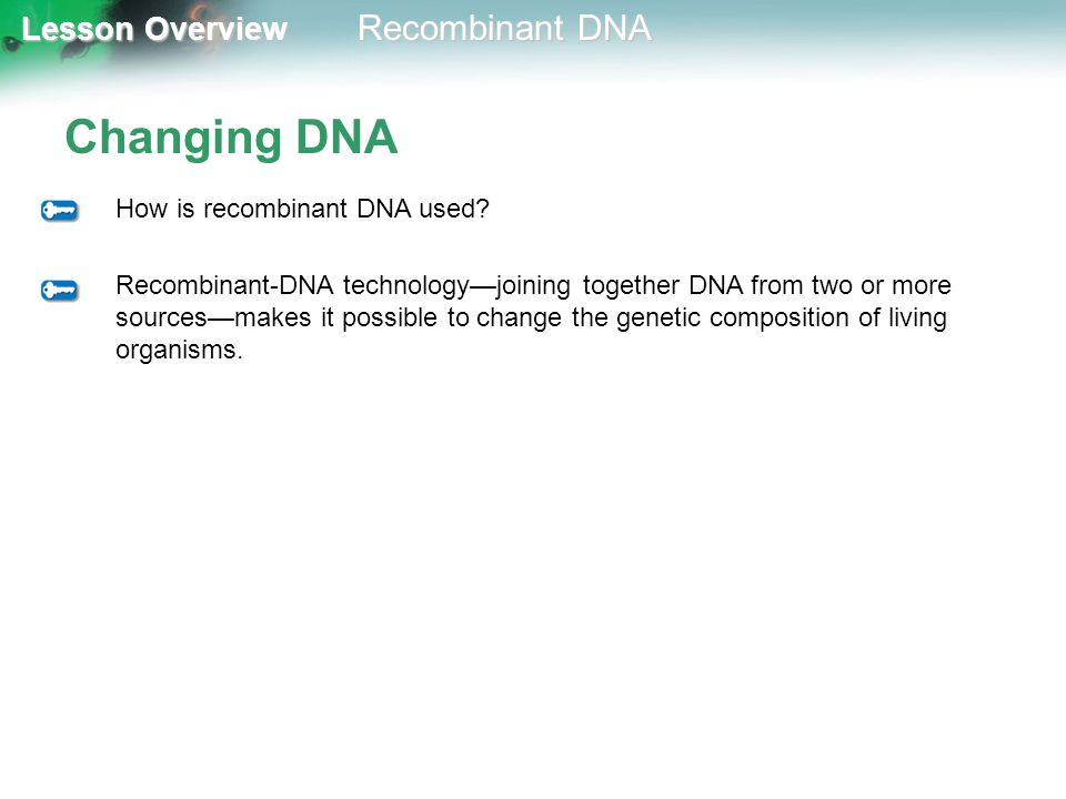 Lesson Overview Lesson Overview Recombinant DNA Changing DNA How is recombinant DNA used? Recombinant-DNA technology—joining together DNA from two or
