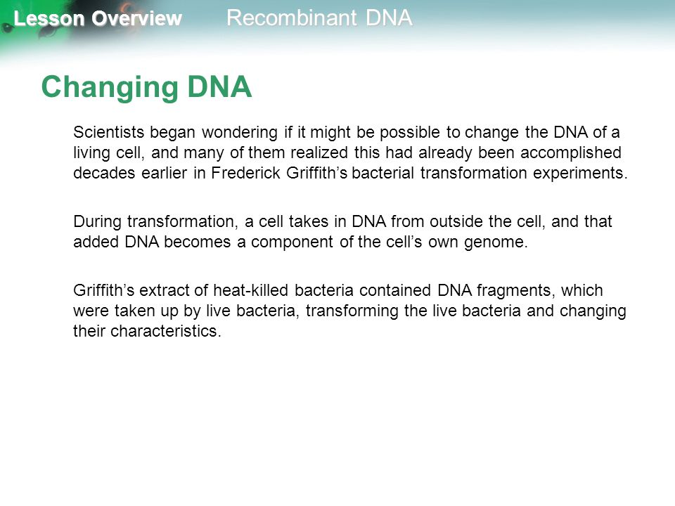 Lesson Overview Lesson Overview Recombinant DNA Changing DNA Scientists began wondering if it might be possible to change the DNA of a living cell, an