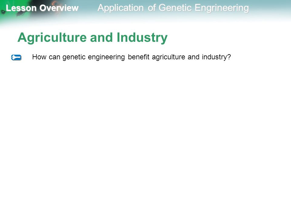 Lesson Overview Lesson Overview Application of Genetic Engrineering Agriculture and Industry How can genetic engineering benefit agriculture and indus