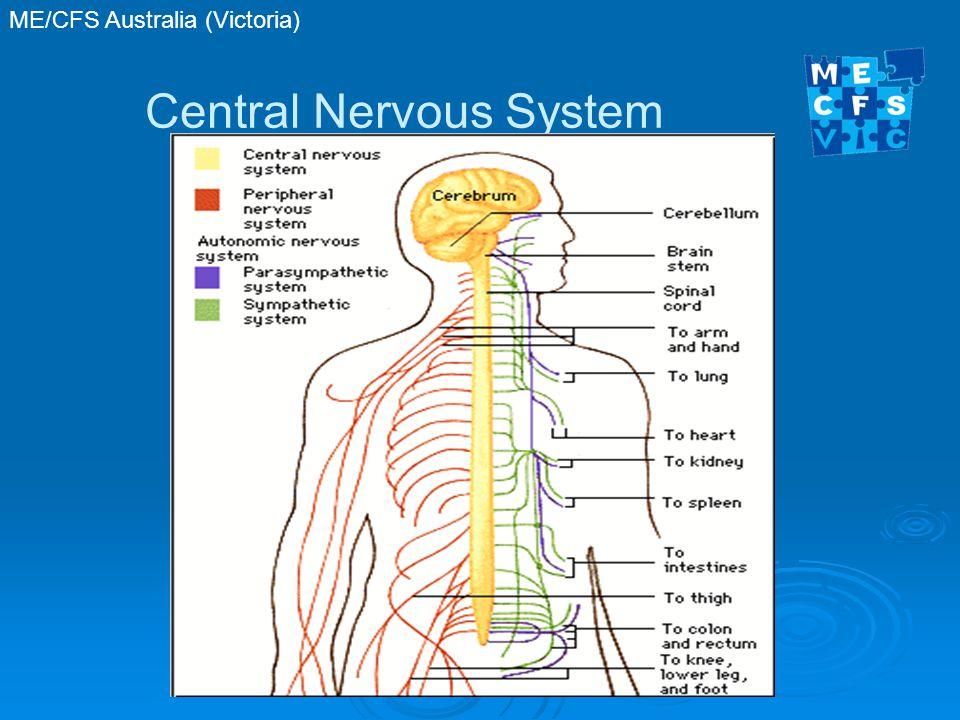 ME/CFS Australia (Victoria) Central Nervous System