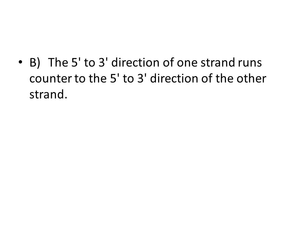 B)The 5' to 3' direction of one strand runs counter to the 5' to 3' direction of the other strand.