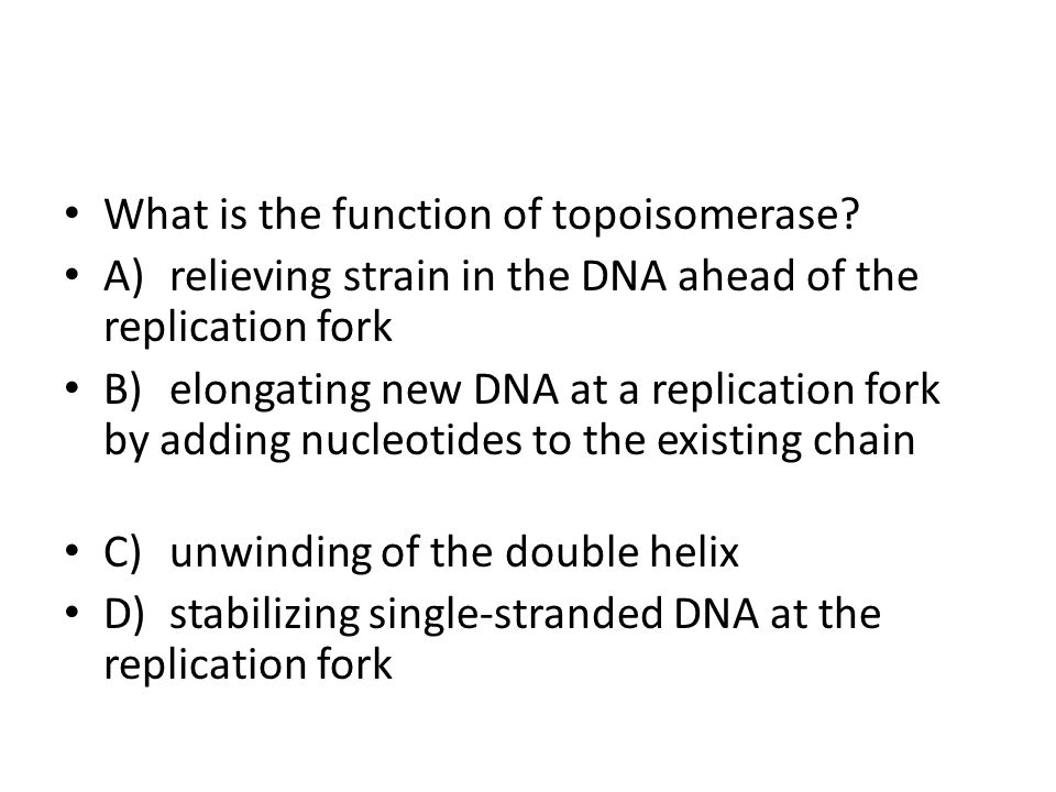 What is the function of topoisomerase? A)relieving strain in the DNA ahead of the replication fork B)elongating new DNA at a replication fork by addin
