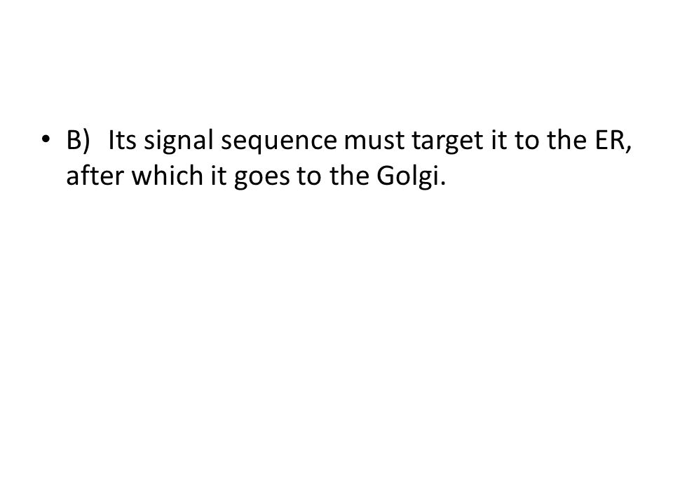 B)Its signal sequence must target it to the ER, after which it goes to the Golgi.