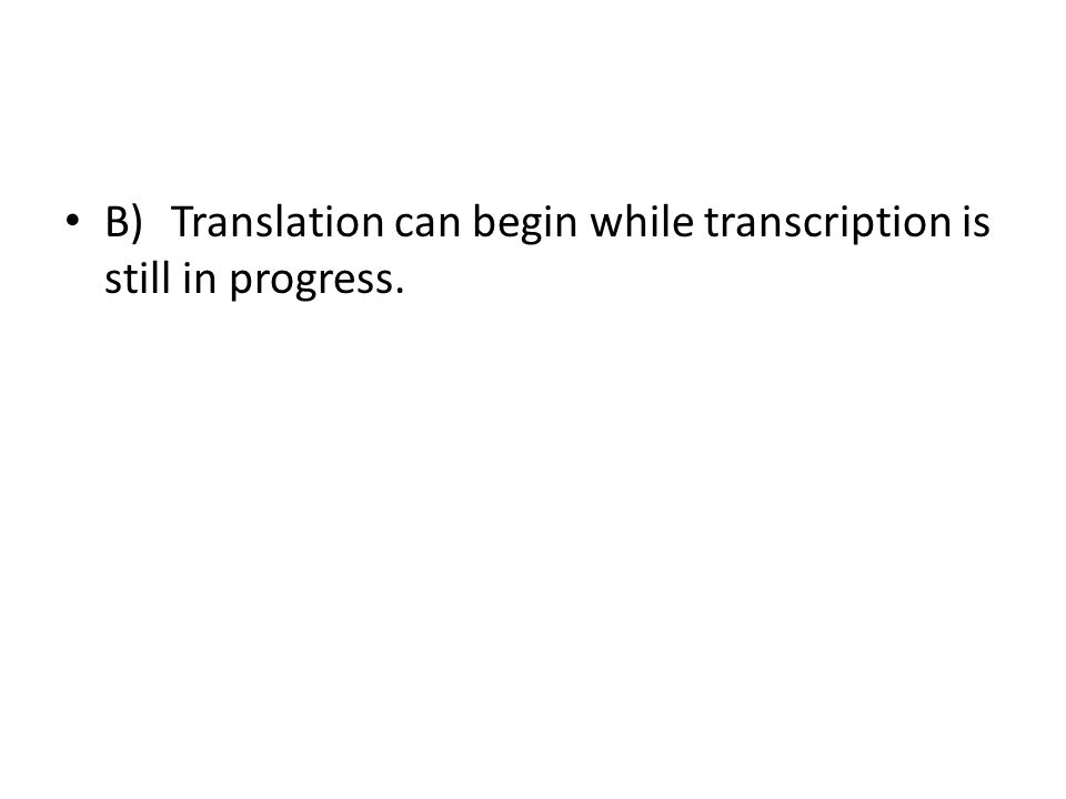 B)Translation can begin while transcription is still in progress.