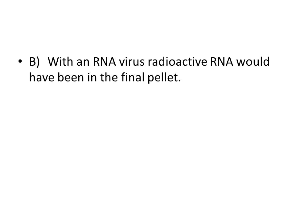 B)With an RNA virus radioactive RNA would have been in the final pellet.
