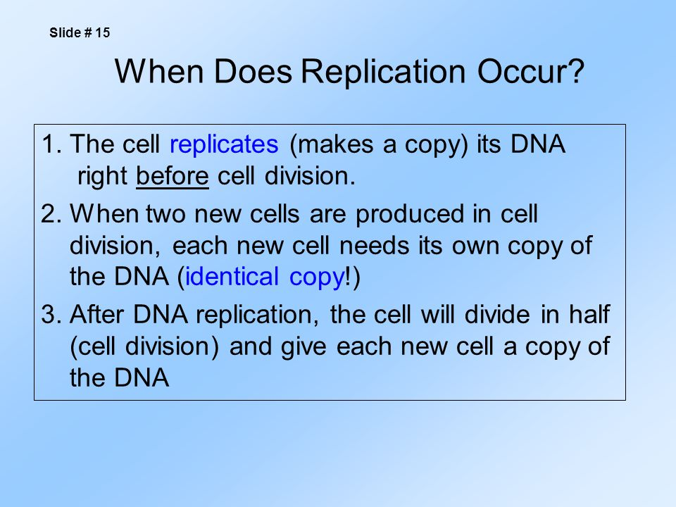 When Does Replication Occur.1.