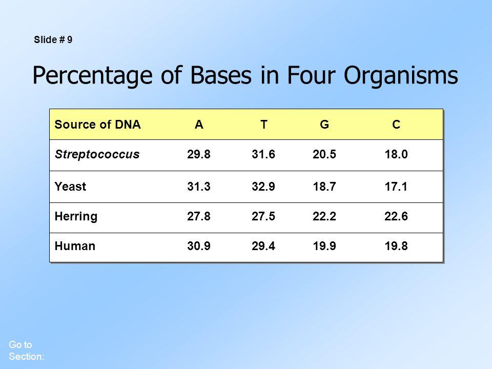 Percentage of Bases in Four Organisms Slide # 9 Source of DNAATGC Streptococcus29.831.620.518.0 Yeast31.332.918.717.1 Herring27.827.522.222.6 Human30.