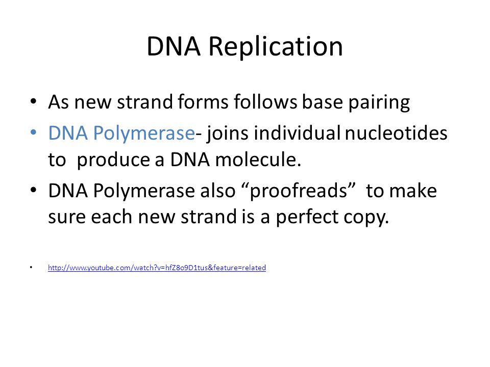 DNA Replication As new strand forms follows base pairing DNA Polymerase- joins individual nucleotides to produce a DNA molecule.