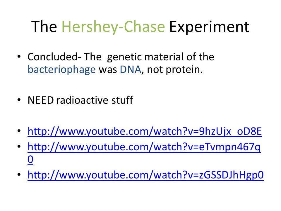 TRANSCRIPTION DNA language RNA language 3 steps Initiation Elongation Termination