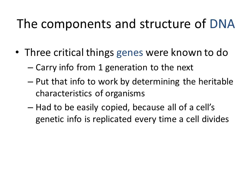 The components and structure of DNA Three critical things genes were known to do – Carry info from 1 generation to the next – Put that info to work by determining the heritable characteristics of organisms – Had to be easily copied, because all of a cell's genetic info is replicated every time a cell divides