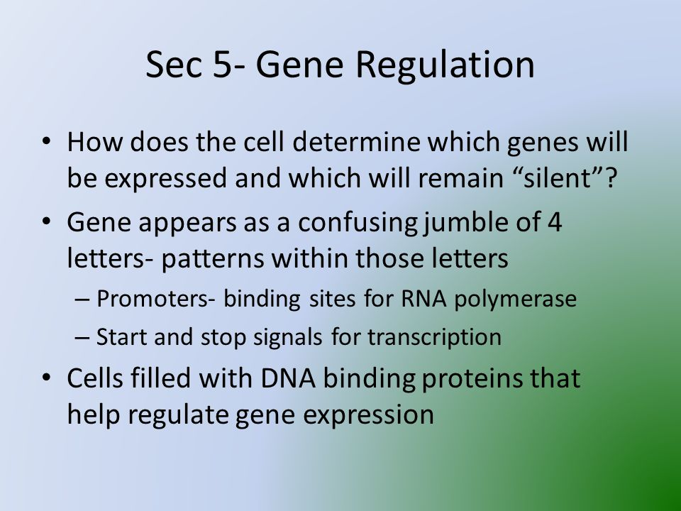 Sec 5- Gene Regulation How does the cell determine which genes will be expressed and which will remain silent .