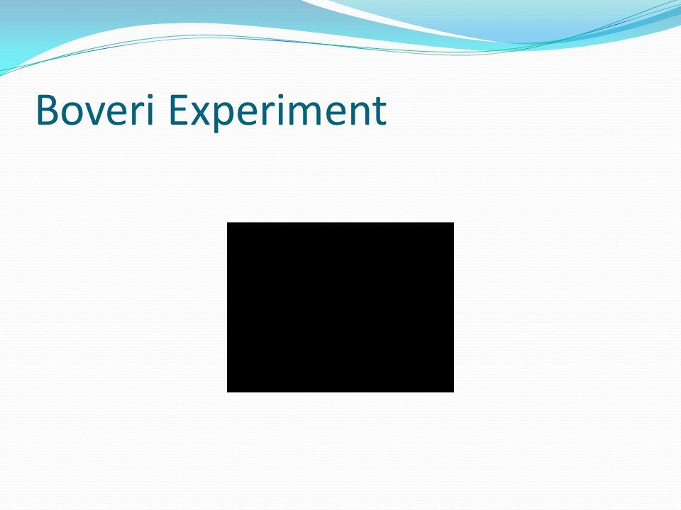 Boveri Experiment