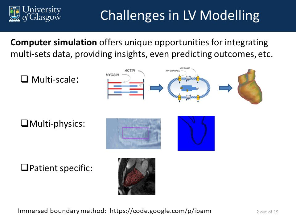 Challenges in LV Modelling  Multi-scale : Computer simulation offers unique opportunities for integrating multi-sets data, providing insights, even predicting outcomes, etc.
