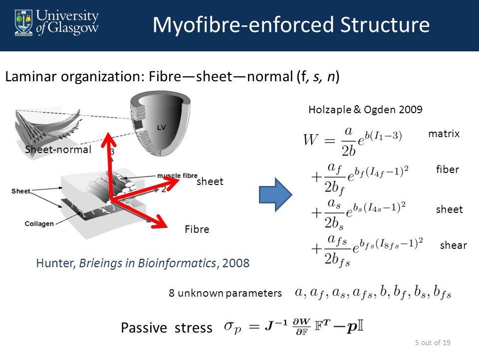 Active Tension Model Niederer S, et al, 2006 Spatially uniform simultaneous 6 out of 19