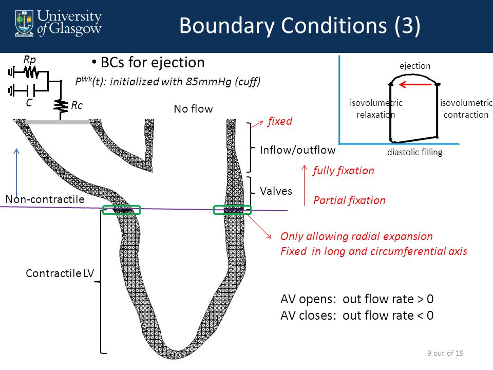 Boundary Conditions (4) Contractile LV Non-contractile Valves Inflow/outflow Only allowing radial expansion Fixed in long and circumferential axis fixed 10 out of 19 BCs for isovolumetric relaxiation No flow diastolic filling isovolumetric relaxation isovolumetric contraction ejection No flow fully fixation Partial fixation