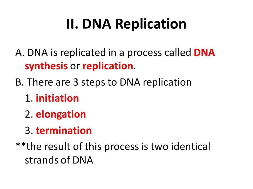 II. DNA Replication A. DNA is replicated in a process called DNA synthesis or replication. B. There are 3 steps to DNA replication 1. initiation 2. el