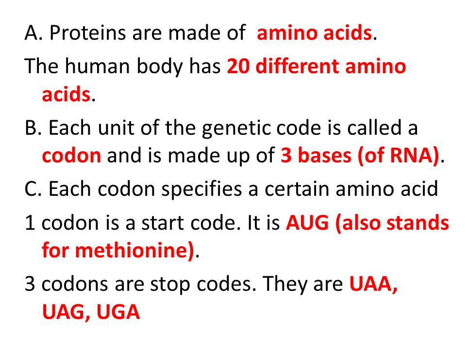 A. Proteins are made of amino acids. The human body has 20 different amino acids.