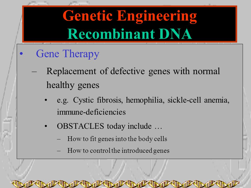 Genetic Engineering Recombinant DNA Gene Therapy –Replacement of defective genes with normal healthy genes e.g. Cystic fibrosis, hemophilia, sickle-ce