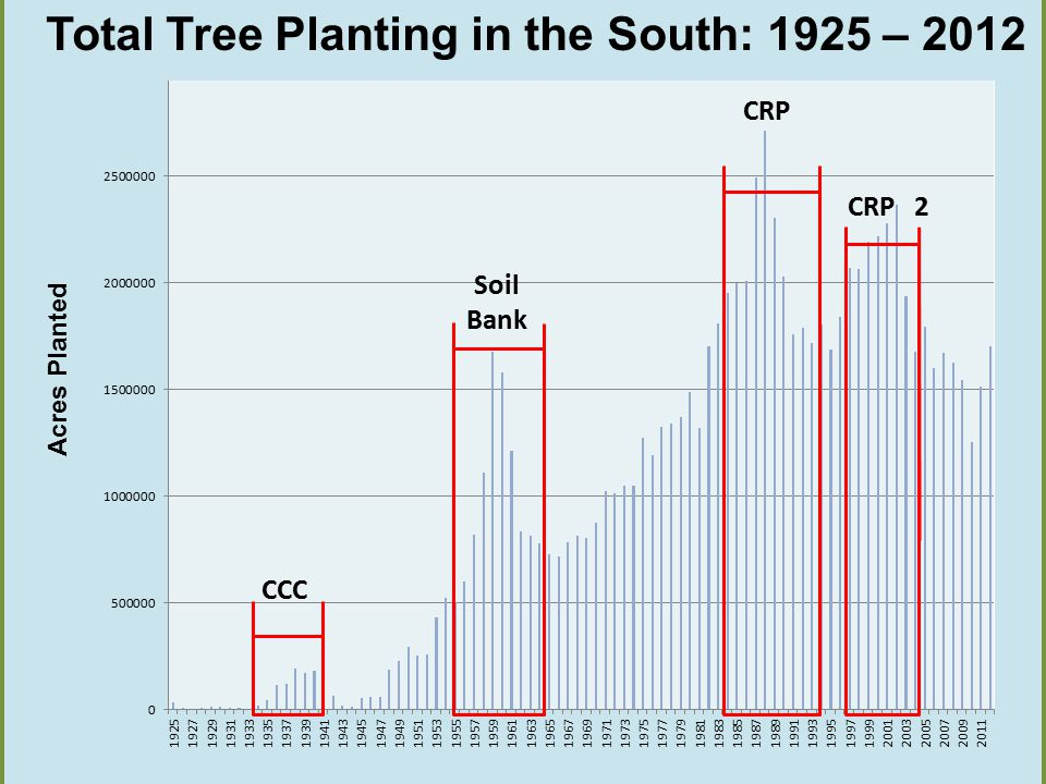 503 acres 1st gen Acres Planted CCC Soil Bank CRP 2 CRP Total Tree Planting in the South: 1925 – 2012