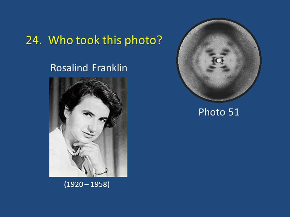24. Who took this photo? Rosalind Franklin Photo 51 (1920 – 1958)