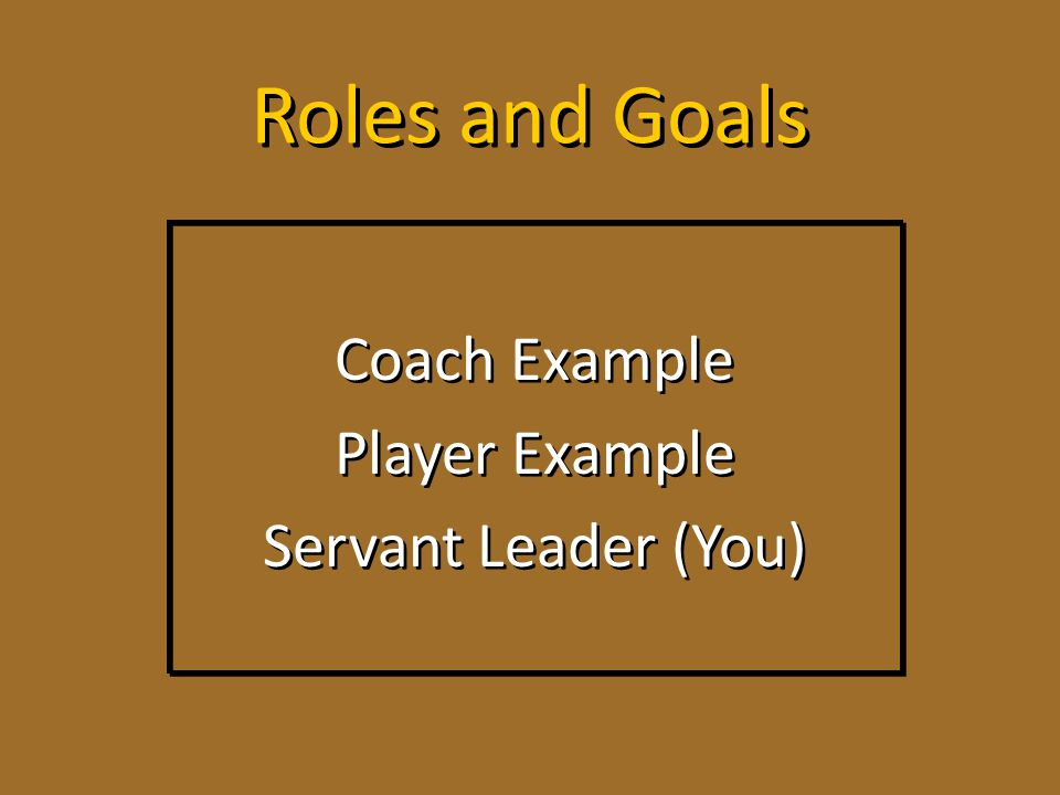 Roles and Goals Coach Example Player Example Servant Leader (You) Coach Example Player Example Servant Leader (You)