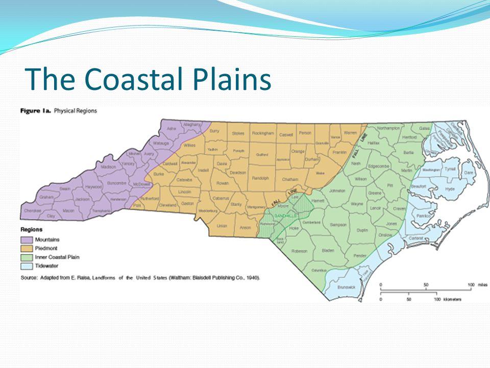 The Coastal Plains