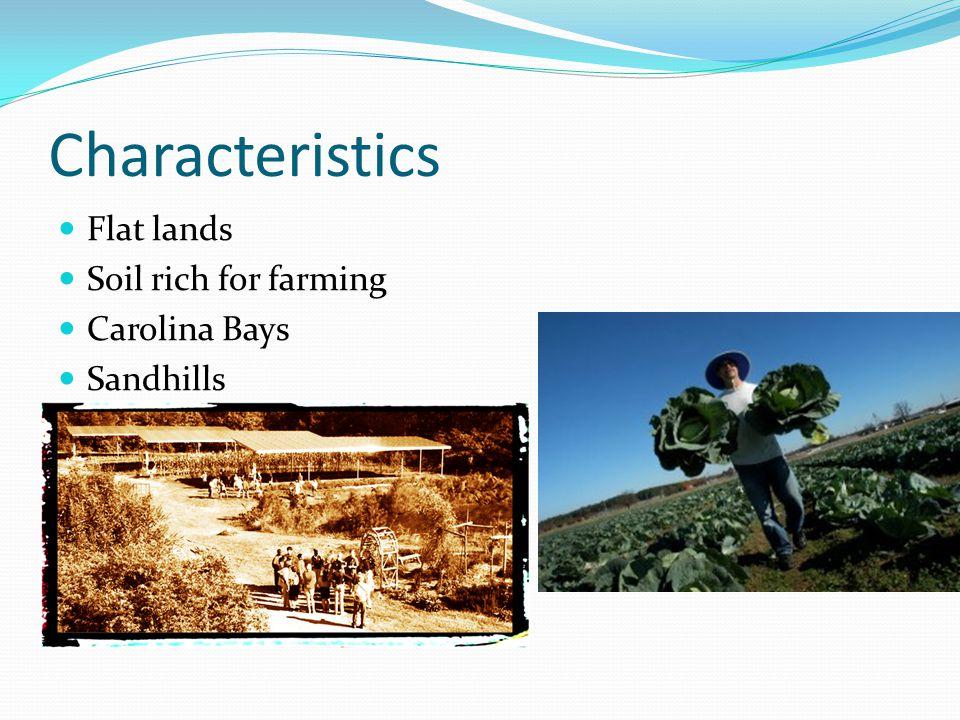 Characteristics Flat lands Soil rich for farming Carolina Bays Sandhills