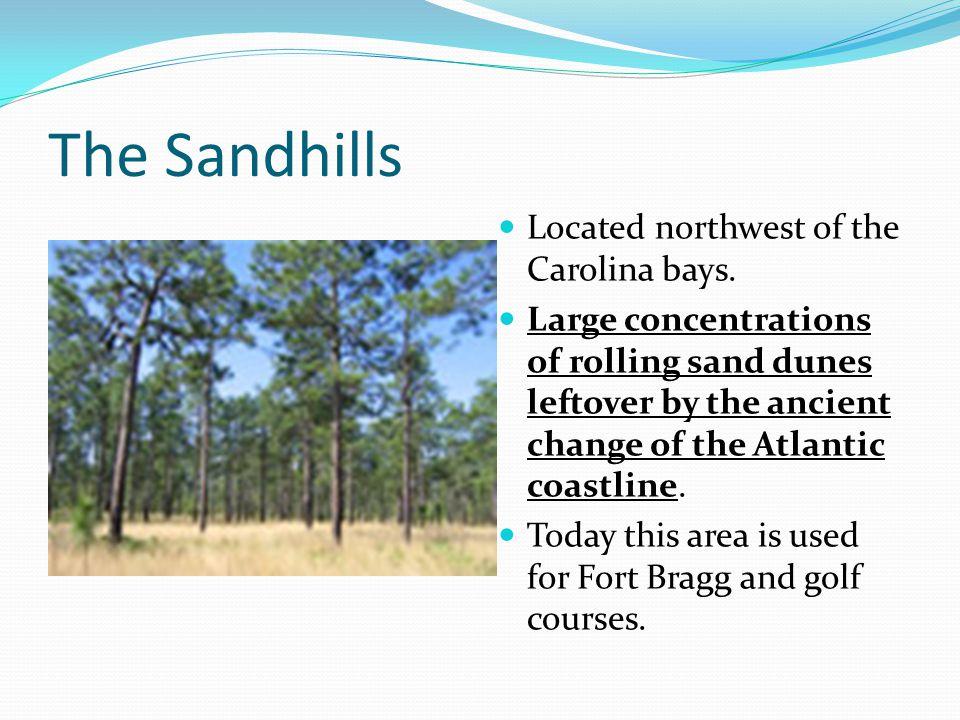 The Sandhills Located northwest of the Carolina bays.