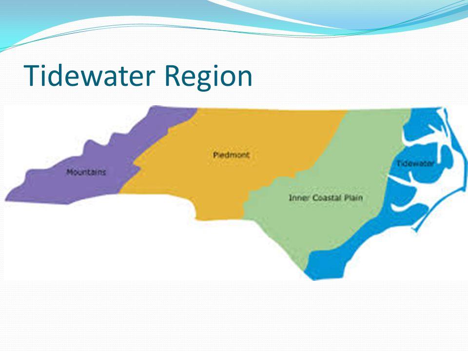Tidewater Region
