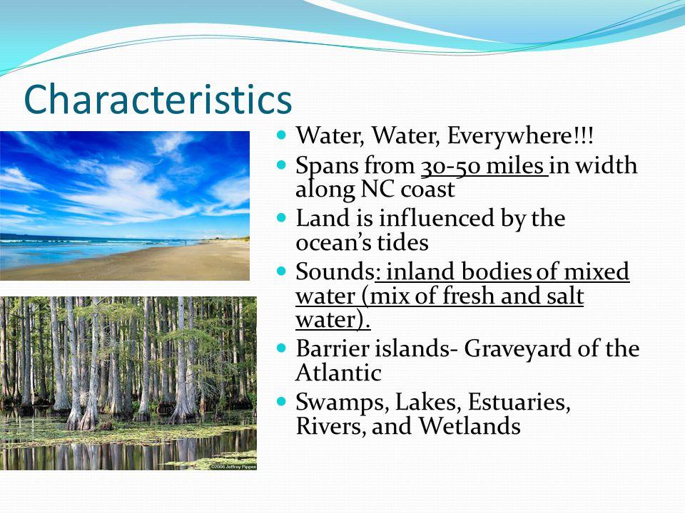 Characteristics Water, Water, Everywhere!!.