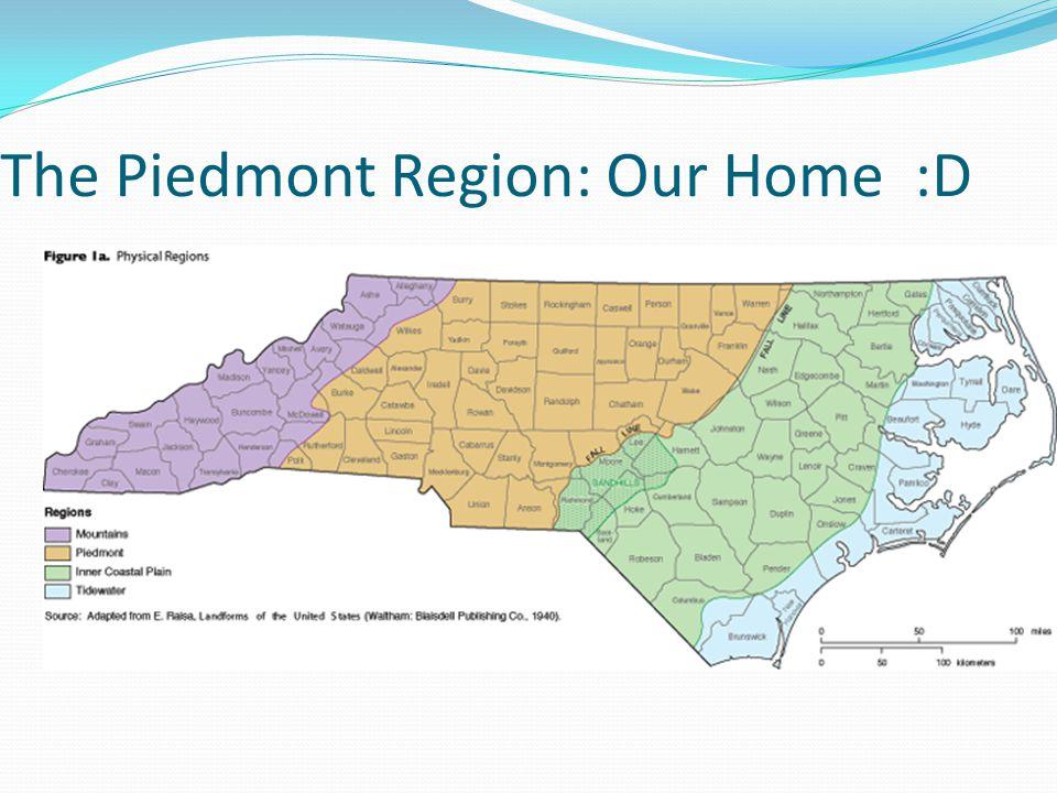 The Piedmont Region: Our Home :D
