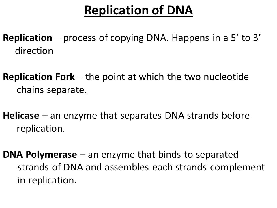 Replication of DNA Replication – process of copying DNA. Happens in a 5' to 3' direction Replication Fork – the point at which the two nucleotide chai