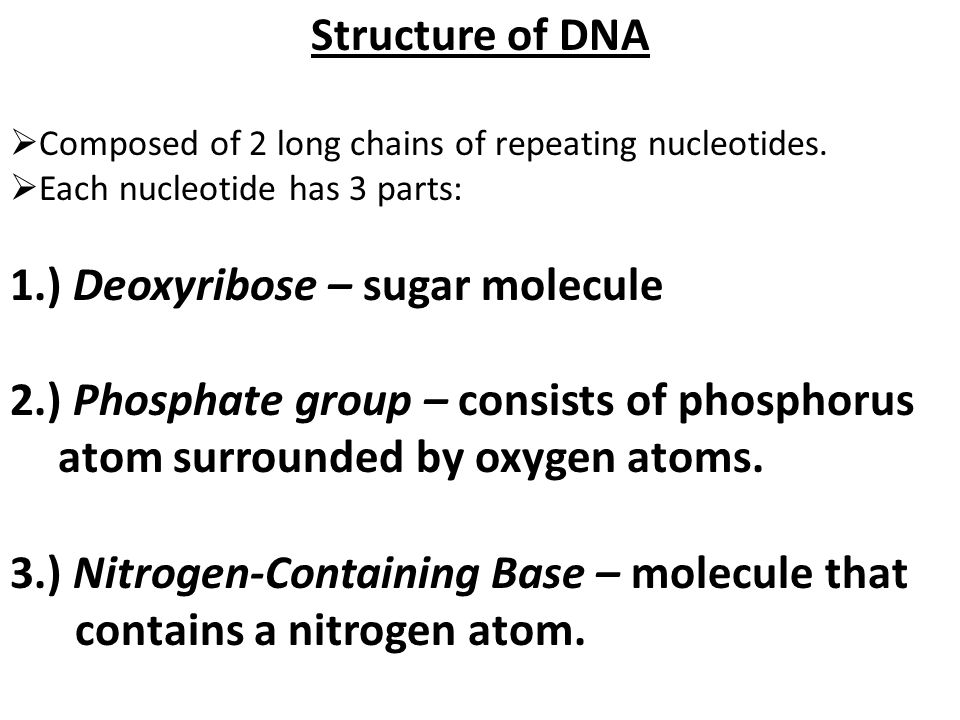 Structure of DNA  Composed of 2 long chains of repeating nucleotides.  Each nucleotide has 3 parts: 1.) Deoxyribose – sugar molecule 2.) Phosphate g