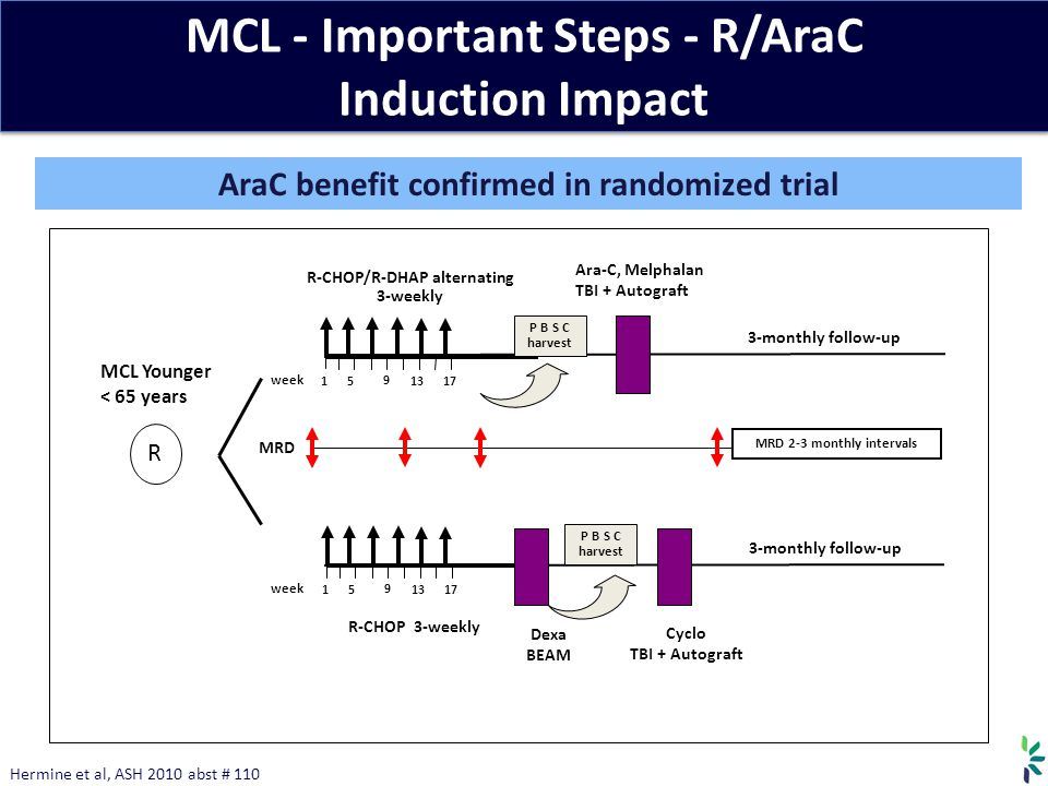 MCL - Important Steps - R/AraC Induction Impact MCL Younger < 65 years R Dexa BEAM Cyclo TBI + Autograft P B S C harvest Ara-C, Melphalan TBI + Autograft 3-monthly follow-up 1 9 5 1317 week R-CHOP/R-DHAP alternating 3-weekly 1 9 5 1317 week R-CHOP 3-weekly 3-monthly follow-up P B S C harvest MRD MRD 2-3 monthly intervals Hermine et al, ASH 2010 abst # 110 AraC benefit confirmed in randomized trial