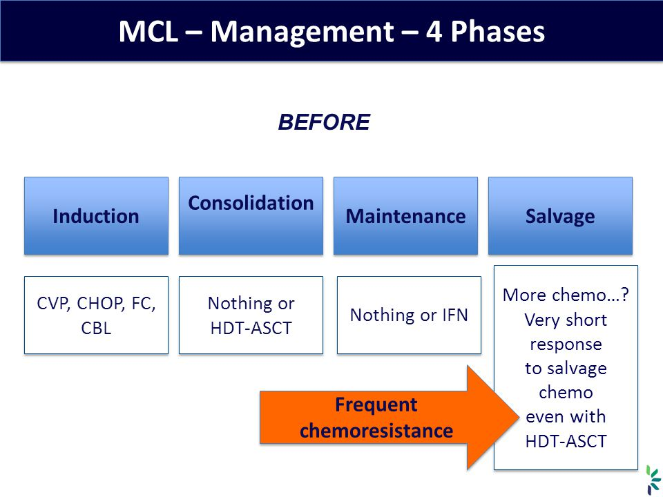 MCL – Management – 4 Phases Induction Consolidation Maintenance Salvage BEFORE CVP, CHOP, FC, CBL Nothing or HDT-ASCT Nothing or IFN More chemo….