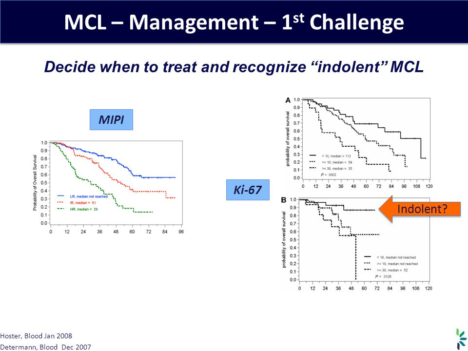 MCL – Management – 1 st Challenge Decide when to treat and recognize indolent MCL MIPI Ki-67 Hoster, Blood Jan 2008 Determann, Blood Dec 2007 Indolent?