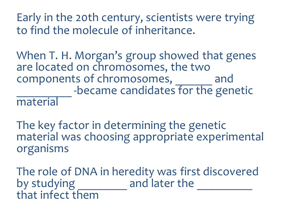 Early in the 20th century, scientists were trying to find the molecule of inheritance.
