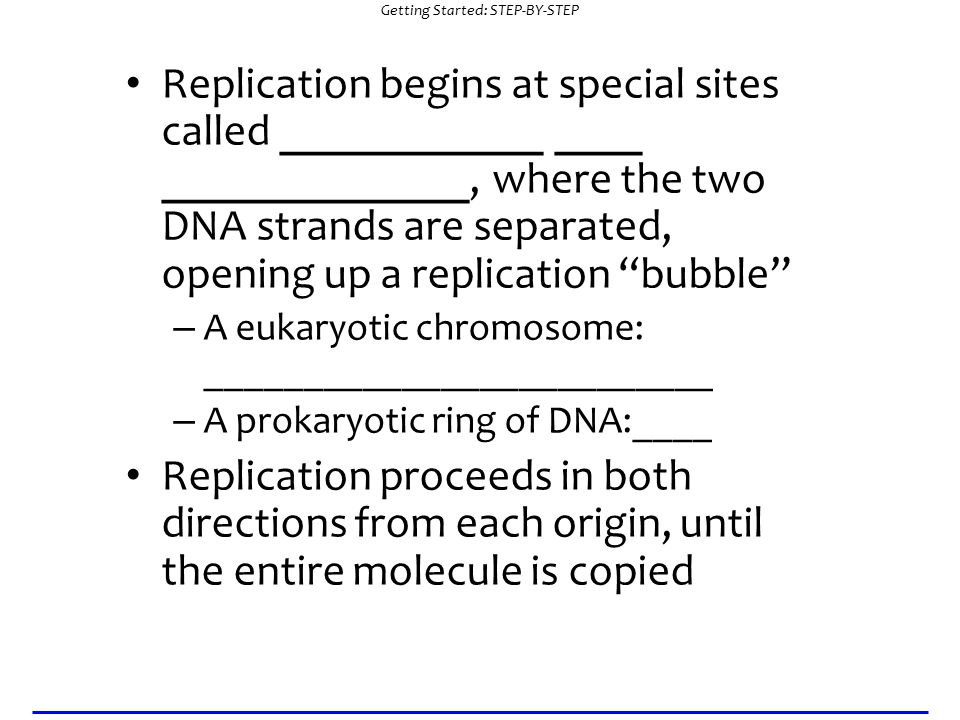 Getting Started: STEP-BY-STEP Replication begins at special sites called ____________ ____ ______________, where the two DNA strands are separated, opening up a replication bubble – A eukaryotic chromosome: __________________________ – A prokaryotic ring of DNA:____ Replication proceeds in both directions from each origin, until the entire molecule is copied