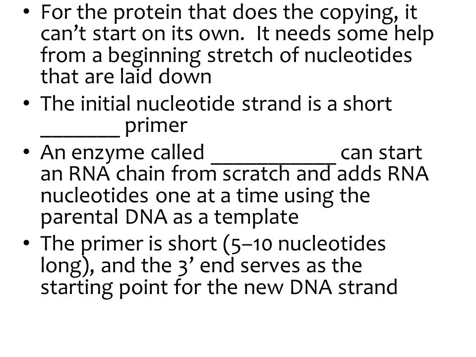For the protein that does the copying, it can't start on its own.