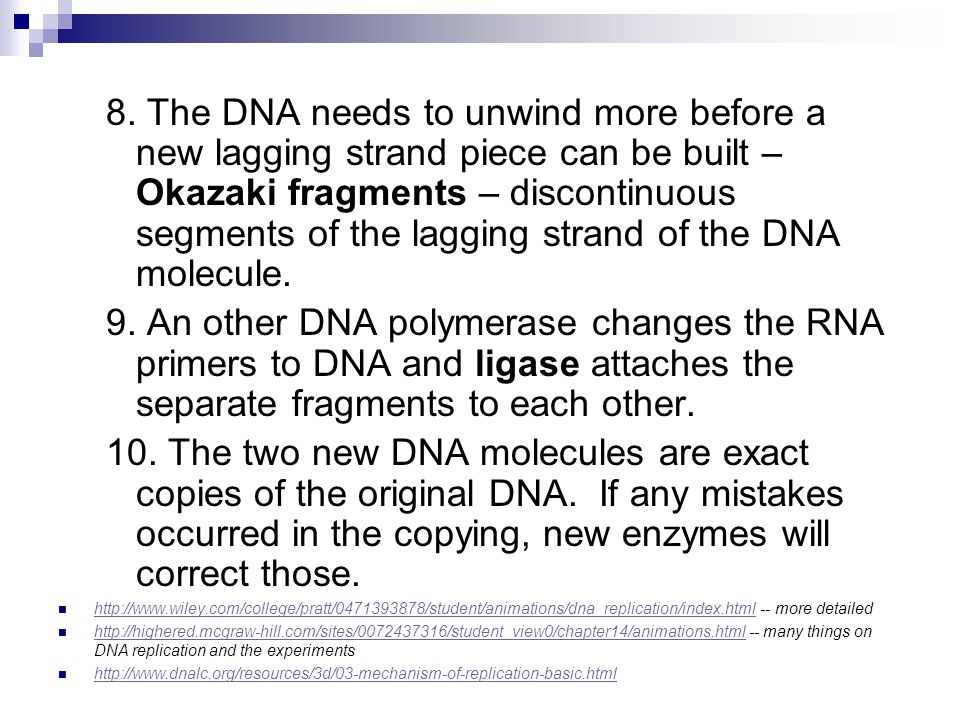 8. The DNA needs to unwind more before a new lagging strand piece can be built – Okazaki fragments – discontinuous segments of the lagging strand of t