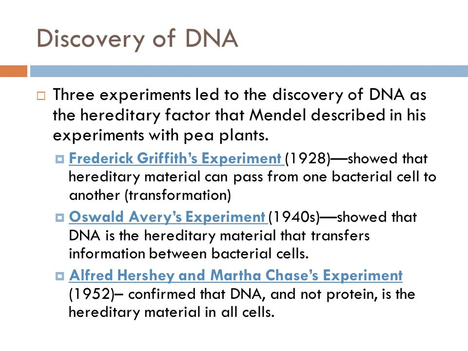 Discovery of DNA  Three experiments led to the discovery of DNA as the hereditary factor that Mendel described in his experiments with pea plants.