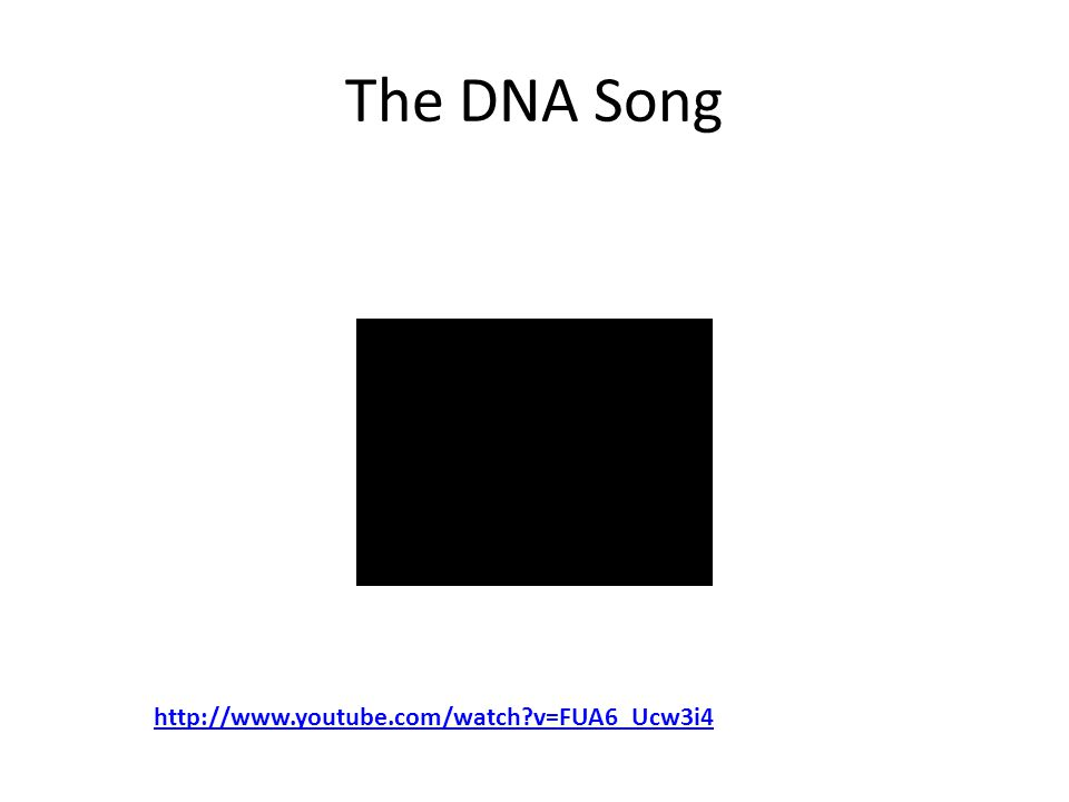 The DNA Song http://www.youtube.com/watch?v=FUA6_Ucw3i4