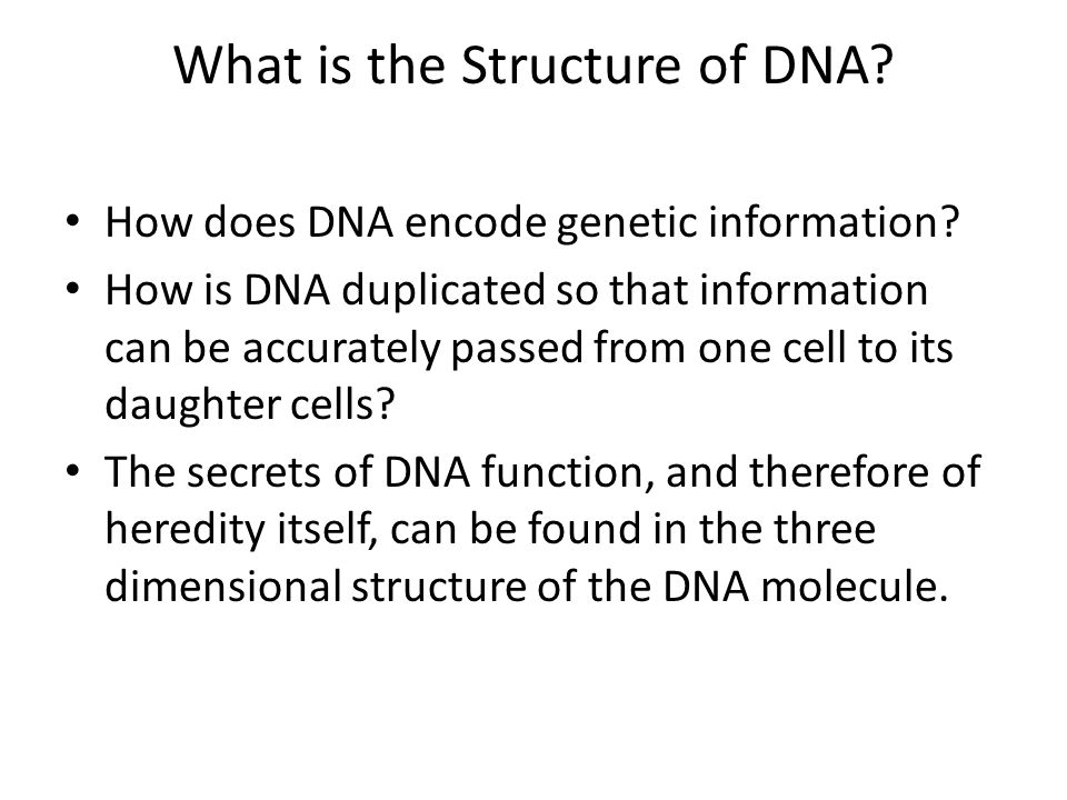 What is the Structure of DNA? How does DNA encode genetic information? How is DNA duplicated so that information can be accurately passed from one cel