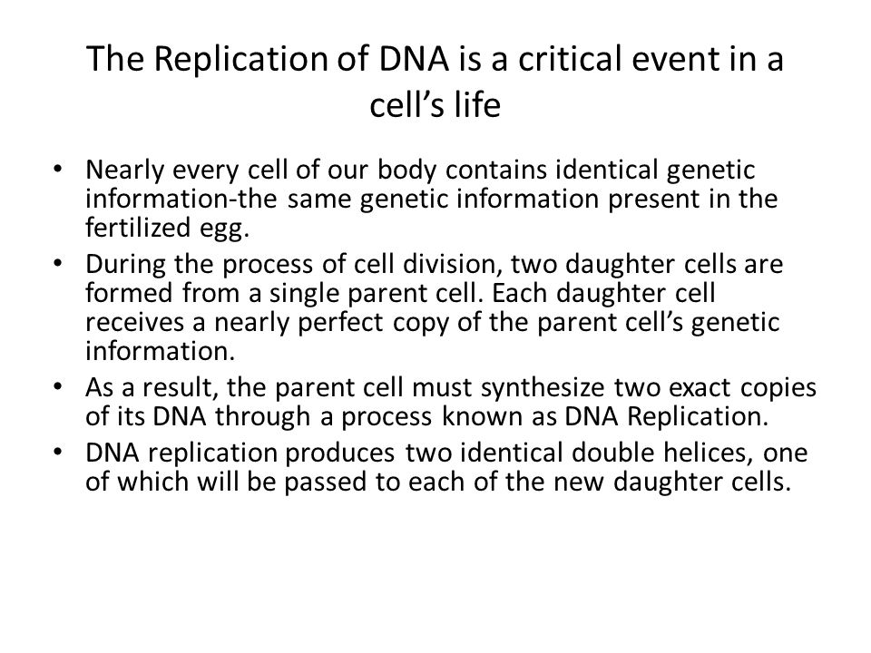 The Replication of DNA is a critical event in a cell's life Nearly every cell of our body contains identical genetic information-the same genetic info