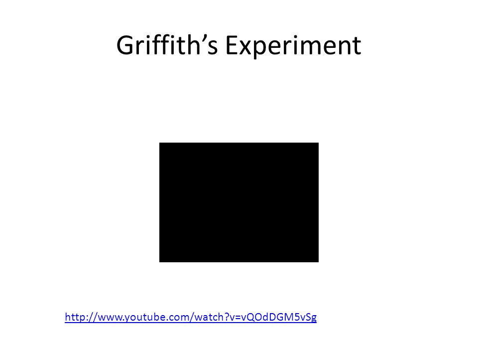 Griffith's Experiment http://www.youtube.com/watch?v=vQOdDGM5vSg