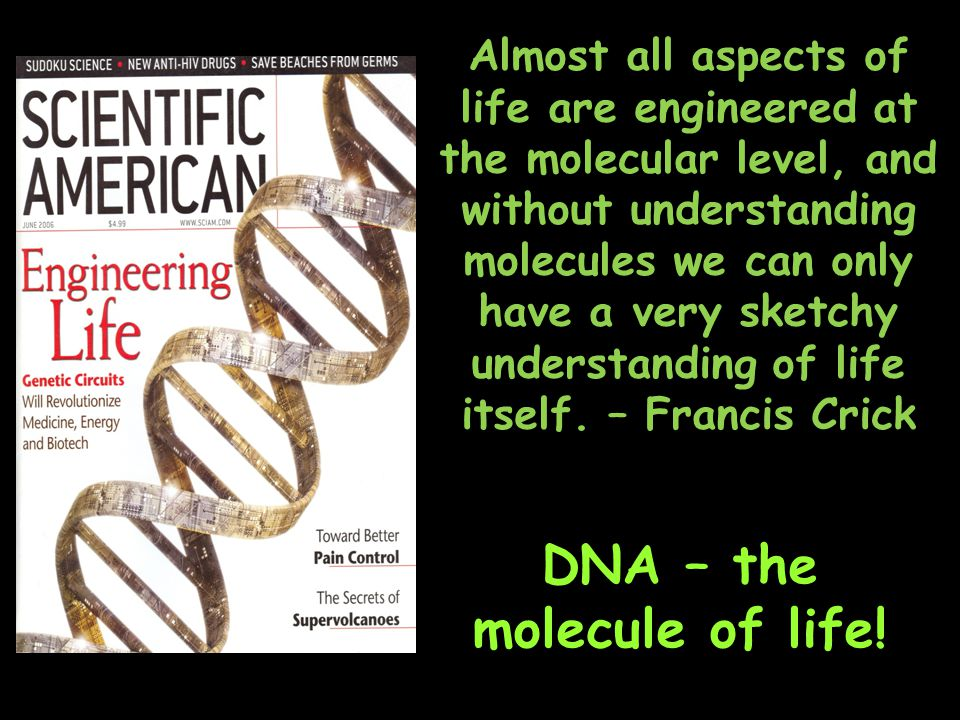 Almost all aspects of life are engineered at the molecular level, and without understanding molecules we can only have a very sketchy understanding of life itself.