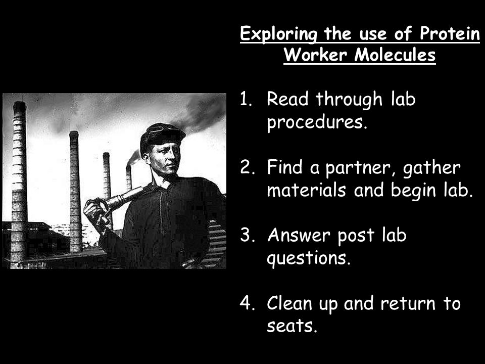 Exploring the use of Protein Worker Molecules 1.Read through lab procedures.