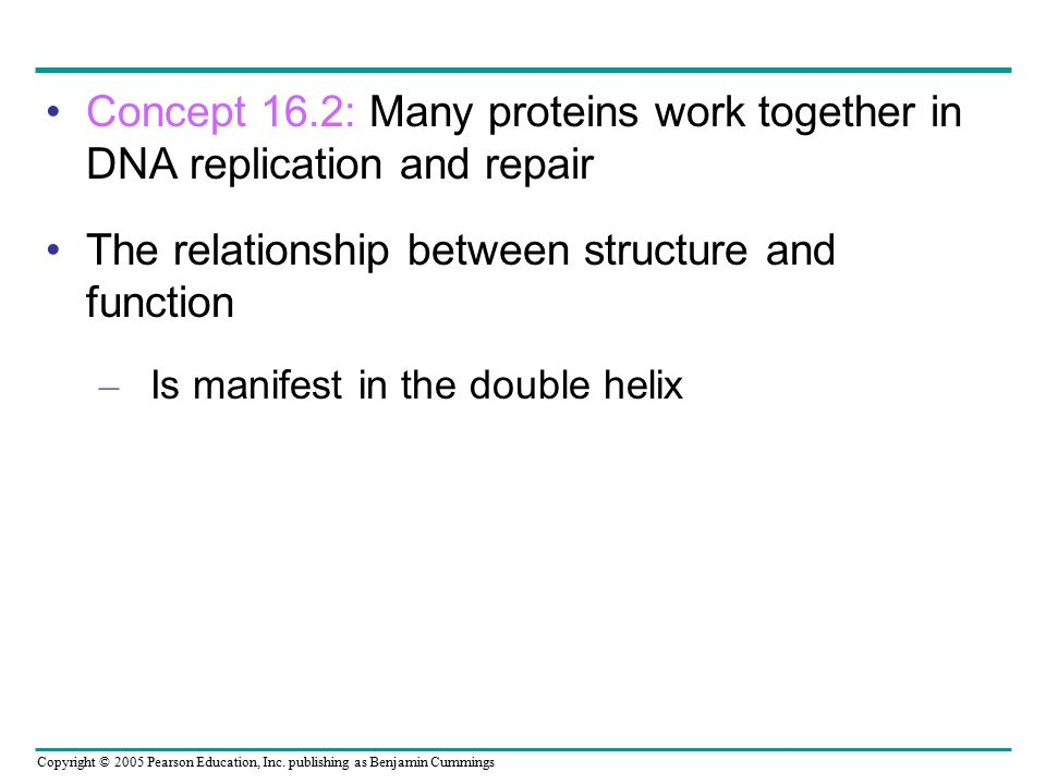 Copyright © 2005 Pearson Education, Inc. publishing as Benjamin Cummings Concept 16.2: Many proteins work together in DNA replication and repair The r